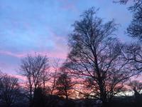 Sonnenuntergang in Roslin