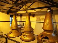 Besichtigung der Auchentoshan Distillery