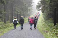 Single-Aktiv-Tag, Wandergruppe