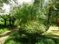 Park Terra Nostra