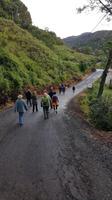 Costa Rica, Savegretal, Morgenwanderung zur Quetzal Beobachtung