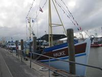 Krabbenkutter Hauke