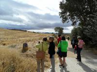 Wanderung auf dem Jacobsweg nach Muruzábal