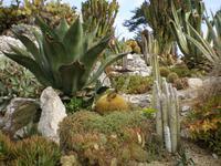 Botanischer Garten Eze