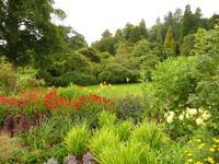 Killerton House & Garden