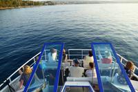 Bootsfahrt in der Kvarner Bucht