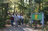 Wanderung am Hardwood Lookout Trail