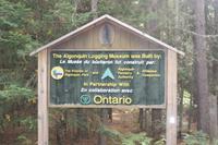 Algonquin-Loggingtrail