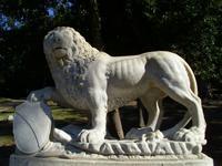 Auch Löwen gibt es