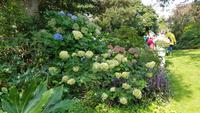 Jersey, St. Helier, Privatgarten von Mrs.Lea