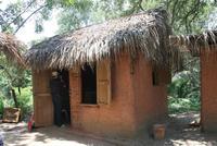 Die traditionellen Lehmhütten der Garifuna