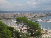 Der Blick auf Palma