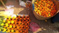 Morning Markt Luang Prabang