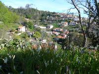 Madeira, Levada da Serra do Faial