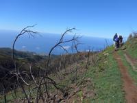 Madeira, Levada do Paul