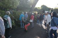 3.Tag Botanischer Garten Funchal