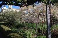 6.Tag Gärten Madeiras
