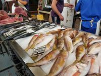 Madeira, Funchal, Fischhalle
