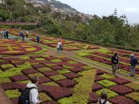 Madeira, Funchal, Botanischer Garten