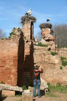 In der Ausgrabungsstätte Chellah