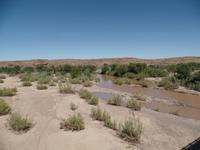 Singlereise Namibia – Spuren am Fish River