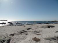 Singlereise Namibia – Diaz Point