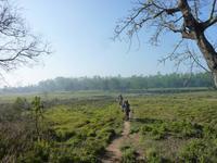 Elefantenausritt im Chitwan NP