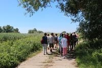 Spaziergang in die Oderauen im Nationalpark Unteres Odertal