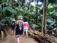 Nationalpark Valleé de Mai, Unesco-Weltkulturerbe auf Prasil Insel (2)