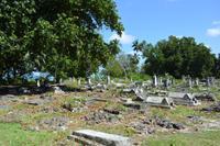 alter Friedhof auf La Digue