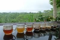 Tee- und Kaffeeverkostung auf der Farm