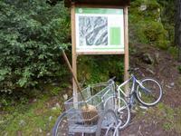 Tag 5 - Wanderung in das Madriu Tal..  hier wird der Wald noch gefegt