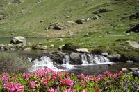 Weg zu Tristaina-Seen