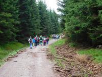 Wanderung zum Veilchenbrunnen im Thüringer Wald bei Oberhof