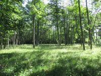 049 Matsalu Nationalpark