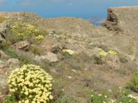 Wanderreise auf Lanzarote - Singlereisen - Wandern - Lanzarote - Spanien
