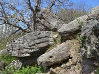 Lesbos, Wanderung ins Mühlental