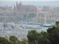 Kathedrale Palma Blick vom Castell