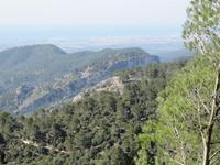 Blick vom Castell d'Alaro