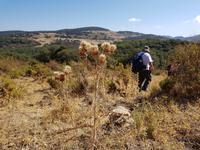 Single-Wanderreise Spanien – sonniges Andalusien (29)