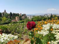 Besichtigung von Alhambra in Granada (20)