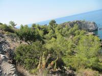Küstenwanderung - Single-Wanderreise Andalusien