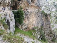 Single-Wanderreise in Nordspanien mit San Sebastian – Picos de Europa – Jakobsweg – Santiago de Compostela – Atlantikküste – Porto (150)