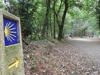 Wanderreise Nord-Spanien – Jakobsweg und Atlantik (583)