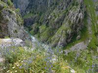 Cares Schlucht Wanderung in Picos de Europa (30)