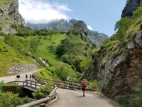 Cares Schlucht Wanderung in Picos de Europa (65)