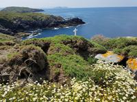 Insel Ons Tagesausflug mit Wanderung (19)