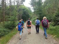 Jakobsweg Wanderung von Arzua bis O Pino (15)