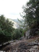 Singlereise Mallorca Wandern – Serra de Tramuntana