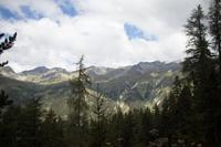 Blick vom Bergliweg